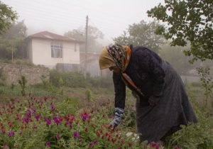 حفظ جمعیت روستایی در گروی تامین آب و اقتصاد پویاست